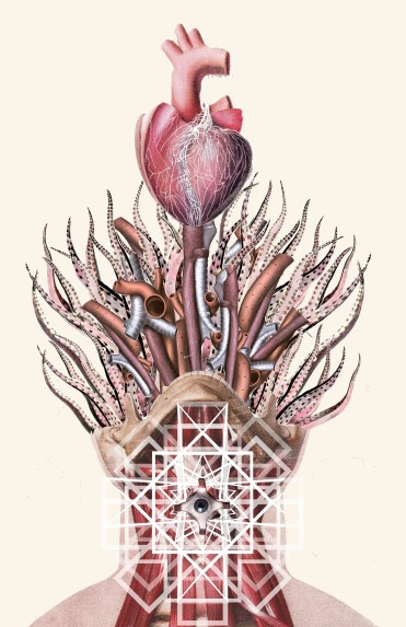 Anatomical Collages By Travis Bedel - 005