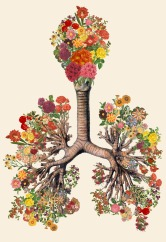 Anatomical Collages By Travis Bedel - 007