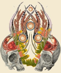 Anatomical Collages By Travis Bedel - 008