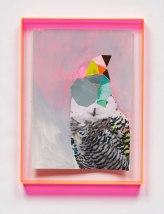 Miranda Skoczek - Abstracted Owl