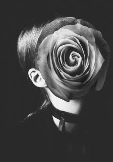 Rocio Montoya - Flowers Series 001