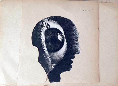 Franz Falckenhaus - Altered State of Mind