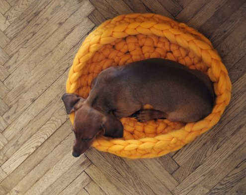 Ohhio - Pet bed. Cozy mat for dog or cat