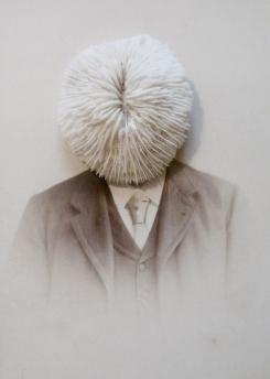 Iris Legendre - Photographies Series 009