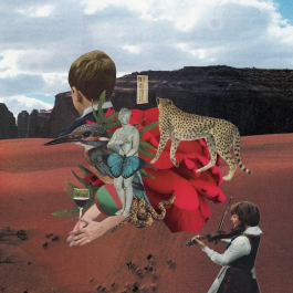 Collage of kids and animals silhouettes on a desert landscape as background.