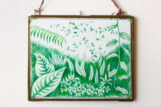 Still life photo of a framed nature illustration hang on a wall.