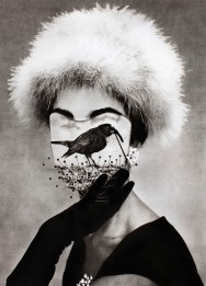 Headless vintage fashion female portrait with a bird that covers the face.
