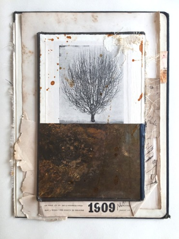 Collage of a tree photo printed on a vintage book.