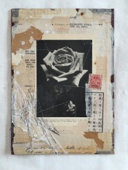 Vintage photo of a rose closeup putted over found vintage papers.