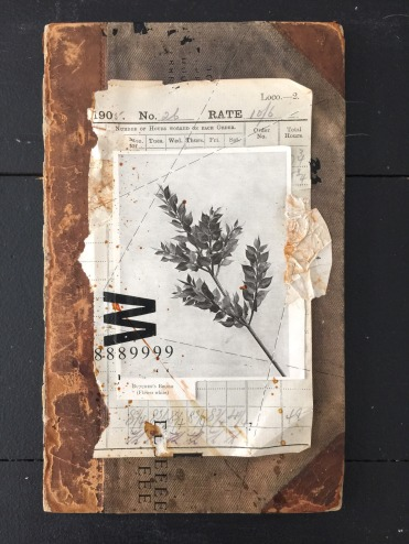 Collage of a plant photo glued over some vintage papers.