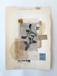 Collage of a vintage plant photo with some old papers as a background.
