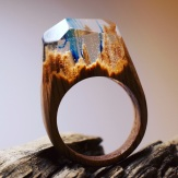 Still life photo of a ring with a tiny underwater landscape inside.