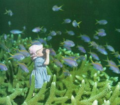 Collage of a baby girl looking an underwater landscape through binoculars.