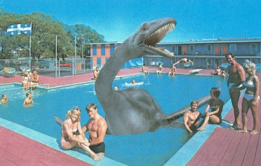 Collage of a swimming pool grasped of people and with a giant dinosaur in the middle.
