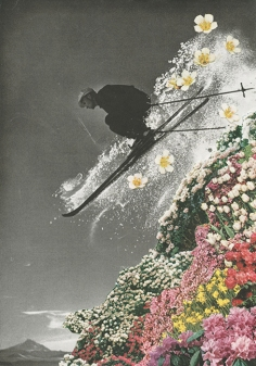 Man skiing and jumping over a flowery mountain.