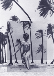 Elegant woman seen from her back putted over a palm and seascape.