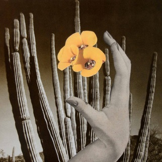 Giant open hand that is touching yellow flowers putted over a cactus.