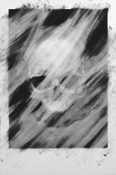 Skull drawing.