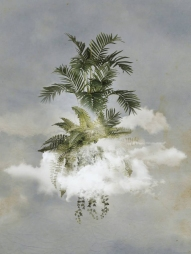 Digital collage of a group of floating plants.