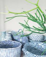 Sill life photo of a plant and dinnerware.
