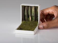 Handcrafted dark miniature scenes realised inside vintage jewellery boxes.