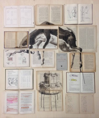 Vintage books installation with a cake and a ram illustration painted over.