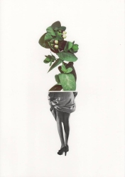 Half female body and half plant collage.