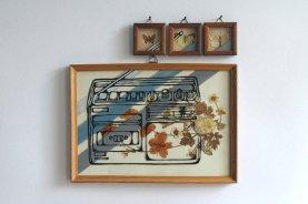 Illustration done over 4 vintage framed dried flowers composition.