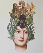 Paper collage composition of natural elements and a woman portrait.