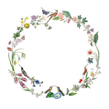 Circular collage composition created with natural elements.