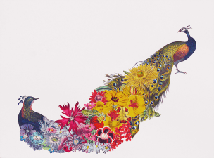 Floral and birds collage composition.