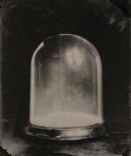 Still life of a bell jar.