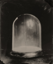 Still life of a bell jar.