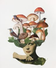 Woman collage with birds and mushrooms coming over her head.