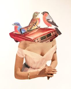 Female bust with a car with birds coming out from her body.