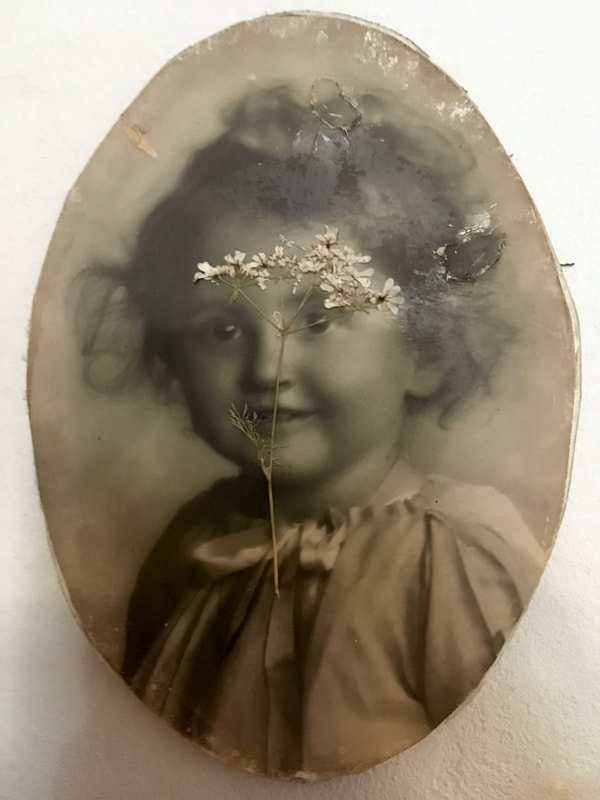 Dried flower over a vintage baby girl portrait.