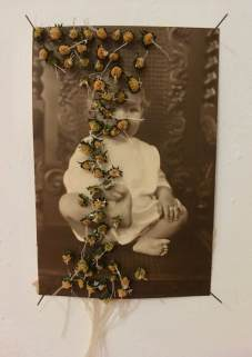 Dried flowers over a vintage baby photo.