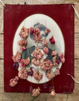 Dried pink flowers over a vintage woman portrait.