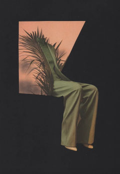 Female body collaged with a plant.